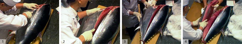 1) and 2) Make a cut along the side of the fish just below the spine all the way to the center. 3) and 4) Cut from back to front to slice off the lower quarter, called the belly cho (a cho is a quarter of the fish), then remove.