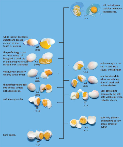 Purdy pictures the charts for How to cook fish eggs