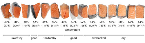 Purdy pictures the charts for What temperature to fry fish
