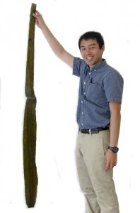 Yuji holding up a leaf of Ma Kombu. Long and strong.