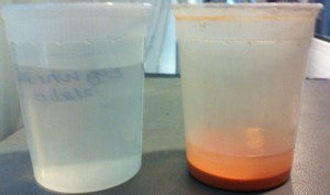 Lime water: On left is clear lime water decanted off teh container on right.  ou can add more water to the red lime paste on right, shake it up, and let it settle again.