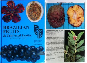 Brazilian Fruit & Cultivated Exotics: Cover on left, sample page on right. Notice the nifty blue grid the fruit is shot on.
