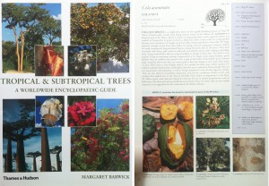Tropical Trees: the cover and a sample page.