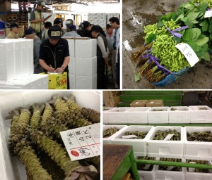 Vegetable auction at Tsukiji market. Notice the dudes with liscence plates on their heads. On the upper right  some beautiful edamame. On the bottom are diffeernt quality lots of wasabi root being auctioned.
